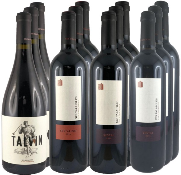12 Flaschen Probierpaket Finca Ses Talaioles (Rotweine) (11+1 Angebot)